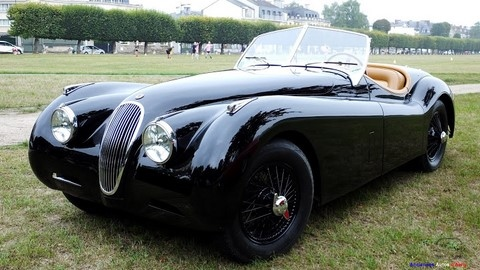 CHANTILLY JAGUAR